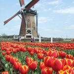 10 places to visit in The Netherlands