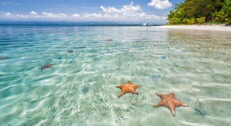 Travel to Starfish Beach Isla Colon Bocas del Toro